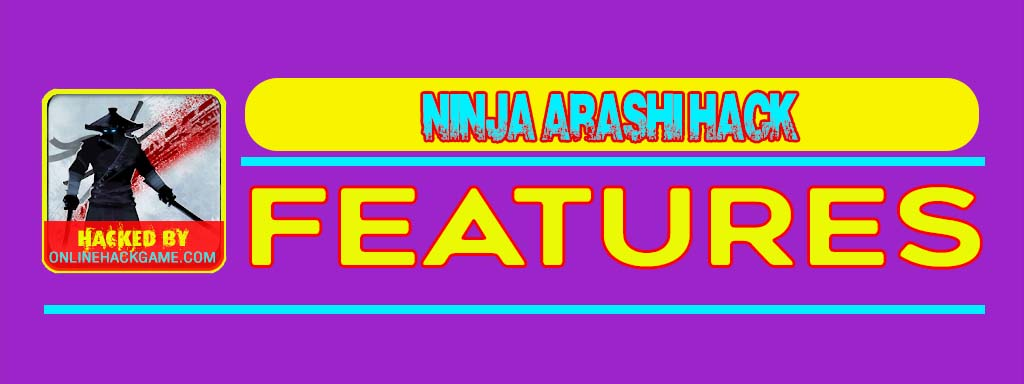 Ninja Arashi Hack Features