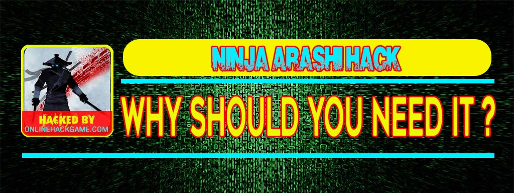 Ninja Arashi Hack Why should you need it